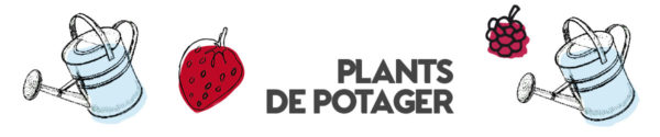 entete-plants